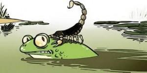 Rana y escorpión